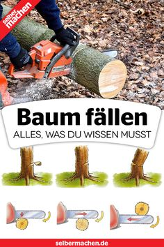 Chainsaw, Garden, Nature, Crafts, Iron, Woodwind Instrument, Fountain Garden, Wood Workshop, Tree Houses