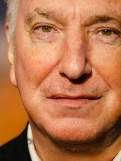 Alan Rickman's Eyebrow