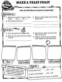 Magic School Bus Worksheet