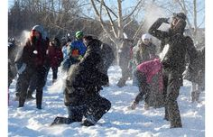 Crowd-sourced snowball fight a big hit at Kinsmen Park (with video) - Edmonton, Alberta, Canada