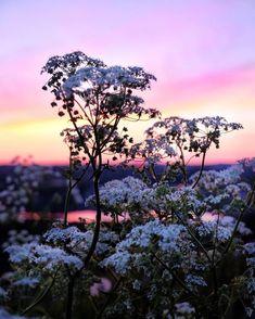 Purple Sky, Night Skies, Ramadan, Instagram Posts