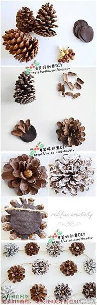 pine cone flowers - bjl