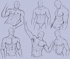 Man Anatomy Practice 2 by KingMaria on deviantART