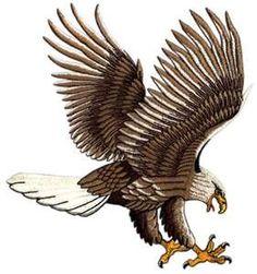 . Tiger Artwork, Eagle Drawing, Make You Smile, Bald Eagle, Album Covers, Quilt Patterns, Lion Sculpture, Sketches, Birds
