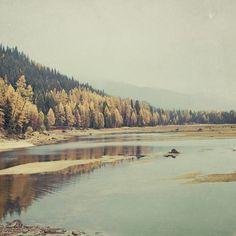 Autunno - Vintage Style Autumn Forest Landscape Photograph Print