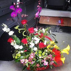 Bunch of #joy Flowers Delivered, Floral Wreath, Joy, Wreaths, Instagram Posts, Plants, Home Decor, Floral Crown, Decoration Home