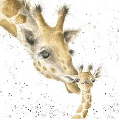 First Kiss - Giraffe Counted Cross Stitch Kit by Hannah Dale of Wrendale Designs Watercolor Animals, Watercolor Paintings, Watercolours, Wrendale Designs, Tier Fotos, First Kiss, Mail Art, Animal Drawings, Painting Inspiration