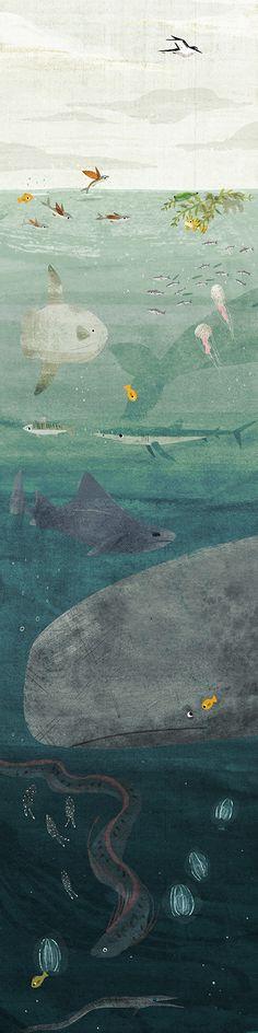 Information - Ella Bailey Illustration, like the gradient of colours here going from light to dark as you descend into the ocean. Art and illustration Art And Illustration, Illustrations Posters, Frida Art, Grafik Design, Sea Creatures, Illustrators, Cool Art, Art Photography, Art Prints