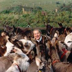 Elisabeth Svendsen surrounded by donkeys