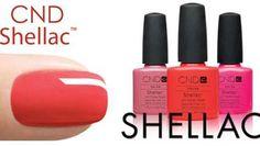 Салоны красоты Шагги | Shellak http://shaggy.com.ua/new_propose/shellak_novoe_pokrytie_dlya_nogteiy  новое покрытие для ногтей