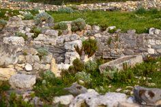 Cornus nella tomba dell'indifferenza - Viaggio in Sardegna