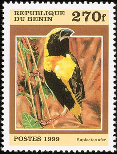 Yellow-crowned Bishop stamps - mainly images - gallery format