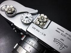 Beautiful full blooming Sakura Leica (((o(*゚▽゚*)o)))Leica M3 with