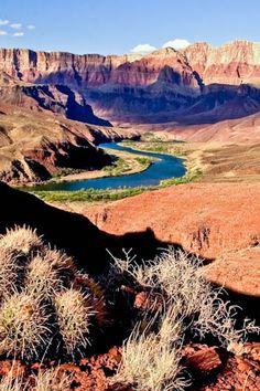 Colorado River, Grand Canyon National Park Go Camping, Outdoor Camping, Grand Canyon National Park, National Parks, Places To Travel, Places To See, Scenery Pictures, Colorado River, Beautiful Places
