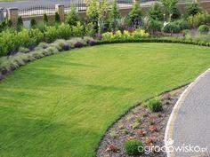 Zielonej ogrodniczki marzenie o zielonym ogrodzie - strona 737 - Forum ogrodnicze - Ogrodowisko
