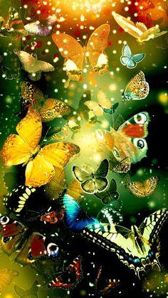 Lots & Lots of Pretty Butterflies