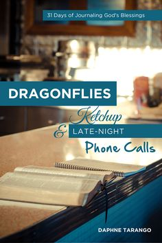 Dragonflies, Ketchup, and Late-Night Phone Calls by Daphne Tarango | daphnewrites.com | #gratitude #journal #thankfulness