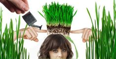 Facts About Hair: #Hair Myths You Have to Stop Believing in Now! Chop it off, see it grow