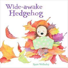 Wide-Awake Hedgehog: Amazon.co.uk: Rosie Wellesley: 9781843653097: Books