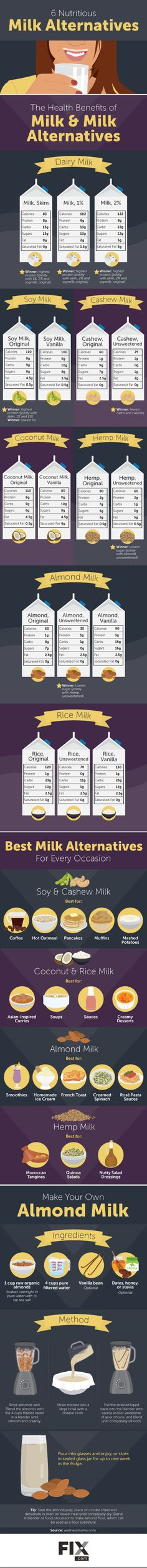 Healthy Alternatives to Dairy Milk   Fix.com