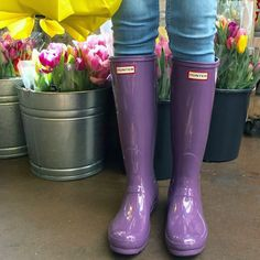 Stay styling through the rain with Hunter Boots from Sole in the City! Hunter Boots Socks, Hunter Rain Boots, Boot Socks, Preppy, Purple, Shoes, City, Fashion, Purple Lilac
