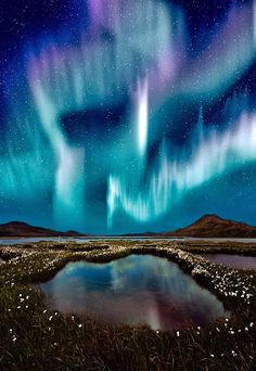 Northern Lights in Iceland | sky | | night sky | | nature |  | amazingnature |  #nature #amazingnature  https://biopop.com/