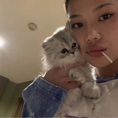 Animals And Pets, Baby Animals, Cute Animals, Tiffany, Cat Aesthetic, Fat Cats, Cute Creatures, Pretty And Cute, Pretty Girls