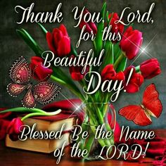 Thank you, Lord
