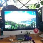 What's on your desk? #dinos #bcorp