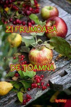 Apple, Fruit, Jenni, Image, Good Morning, Apple Fruit, Apples