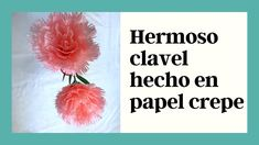 Como hacer un hermoso clavel en papel crepe Flower Designs, Flower Types, Carnations, Floral Design, How To Make, Manualidades