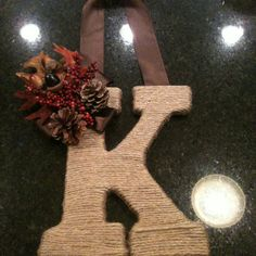Fall decor I made for the front door!