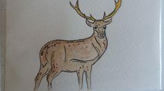 #Deer #Deer Watercolour #Deer Watercolor #Postcard #Deer Postcard