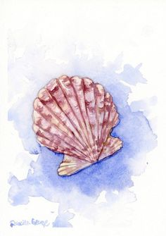 New to PriscillaGeorgeArt on Etsy: Purple Scallop Sea Shell Art Print Wall Decor and USD) Watercolor Sea, Watercolor Art Paintings, Watercolor Animals, Painting & Drawing, Shell Drawing, Nature Drawing, Vintage Drawing, Seashell Art, Sea Art