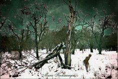 'Baum im Winter' von Marie Luise Strohmenger bei artflakes.com als Poster oder Kunstdruck $18.03