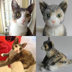 100% custom stuffed animals made to look just like YOUR pet! They're called Cuddle Clones : ) This is Jenna the Calico and her Cuddle Clone : )