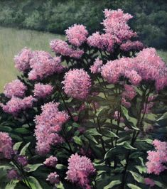 Joe Pye Weed, original oil on canvas by Lewis Bryden | R. Michelson Galleries