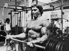 Arnold Schwarzenegger 32x24 inch / 80x60 cm Plastic Poster Kunststoff Plakat Wasserdicht   Anti-Fade   Kann auf den Außenbereich/Garten/Badezimmer 5TJ-4D4D/91F0: Amazon.de: Küche & Haushalt