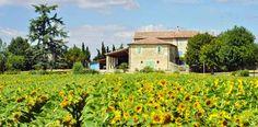 Maalaistalo Provencessa.