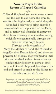 Novena Prayer for the Return of Lapsed Catholics. I pray one day my son and daughter will return to the faith I hold dearest to my heart and soul.so they to will enjoy the gifts all that brings. Catholic Religion, Catholic Quotes, Catholic Prayers Daily, Catholic Doctrine, Catholic Saints, Patron Saints, Faith Prayer, My Prayer, Holy Mary