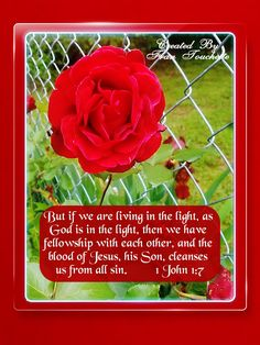 Bible Verse For Today, Bible Verses, Bible Forgiveness, Jesus Is Lord, God, 1 John 1 7, All Sins, Believe In You, Cleanse