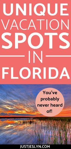 Find the coolest vacation spots in Florida that you've probably never heard of! Find out the most beautiful destinations that are cheap and things to do with kids. These are all affordable and fun places to visit for spring break or summer! #springbreak #florida #travel
