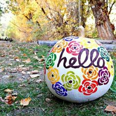 And Hello to you @veiwfromtheairport  What a perfect fall photo! Love your #beautygourd