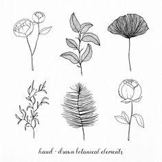 Trendy Plants Illustration Line Drawings 66 Ideas Peony Drawing, Floral Drawing, Flower Drawings, Rose Illustration, Boutique Logo, E Flowers, Flower Art, Tattoo Main, Botanical Line Drawing