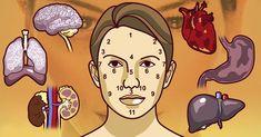 Su rostro es su carta de presentación. Según la cultura oriental, existen señales presentes en él que pueden ser interpretadas para descubrir diferentes afecciones en su organismo y...