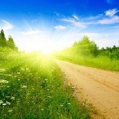 Шанс жить дальше Country Roads