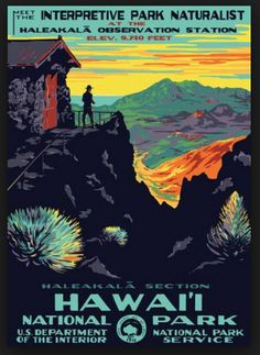 Vintage NP TP: Hawaii