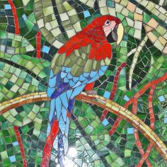 -mosaic-macaw-parrot