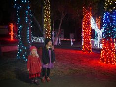 Little Hiccups: Zoo Lights at Oakland Zoo