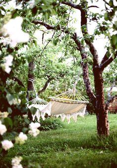 In onze boomgaard